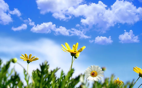 2006-clouds-yellow-spring-sky-cloud-2560