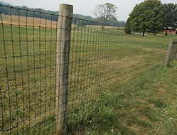 Wood posts with 2 x 4 Woven Wire by Wayne's Fencing