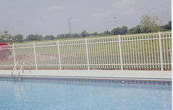 Ornamental Aluminum to Enclose Your Pool by Wayne's Fencing