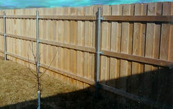 Wood fence on steel posts
