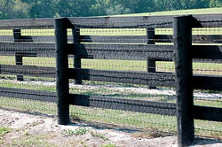 Four Rail With Diamond Mesh by Wayne's Fencing