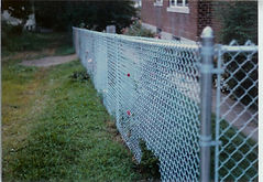 Aluminized Chain Link Fence