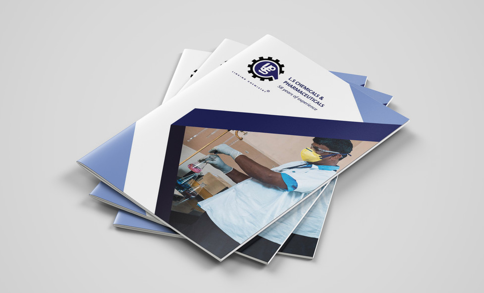 LS brochure Mockup (1).jpg