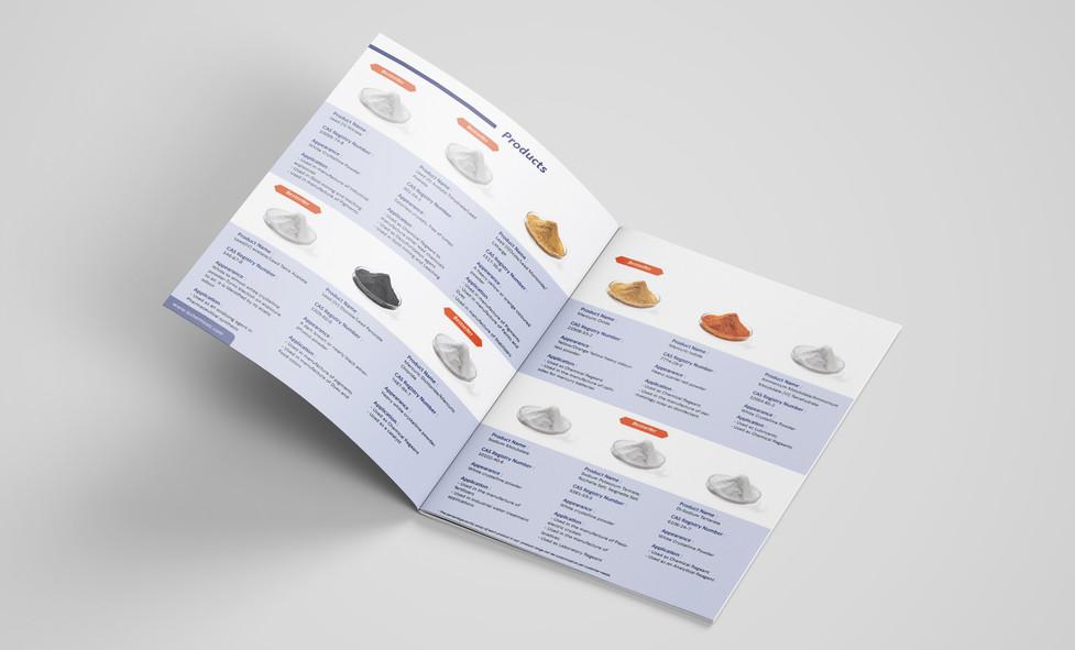LS brochure Mockup 1 (1).jpg