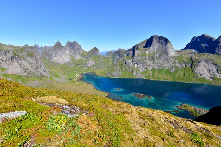 Die Fjorde ragen weit in die Täler hinein