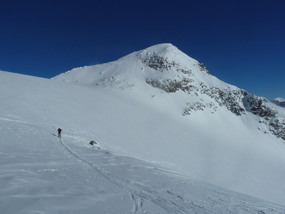 Skitour Schwarzenstein Trippachtal