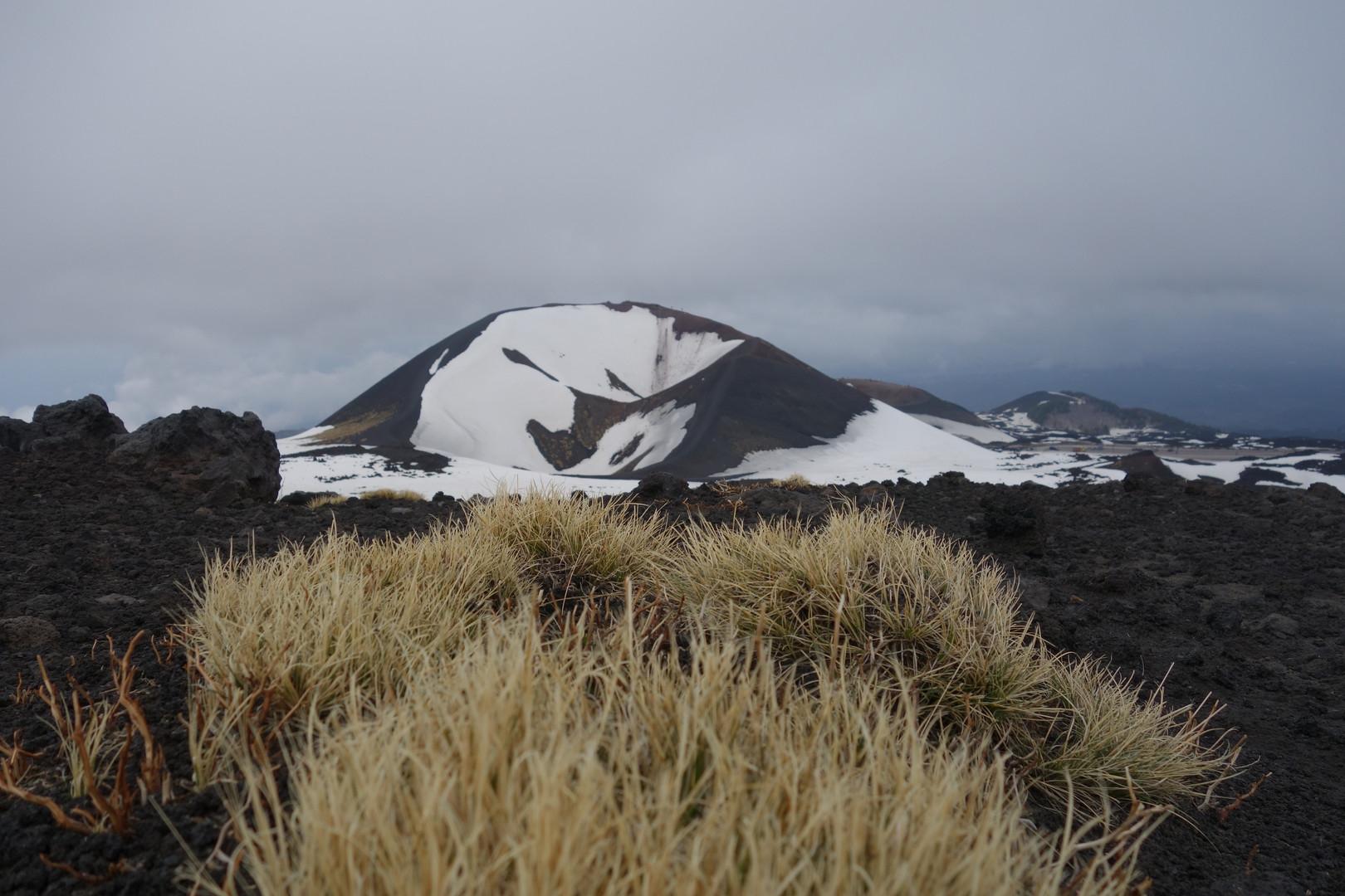 Der gesamte Vulkankegel ist gesäumt von Kratern älterer Ausbrüche
