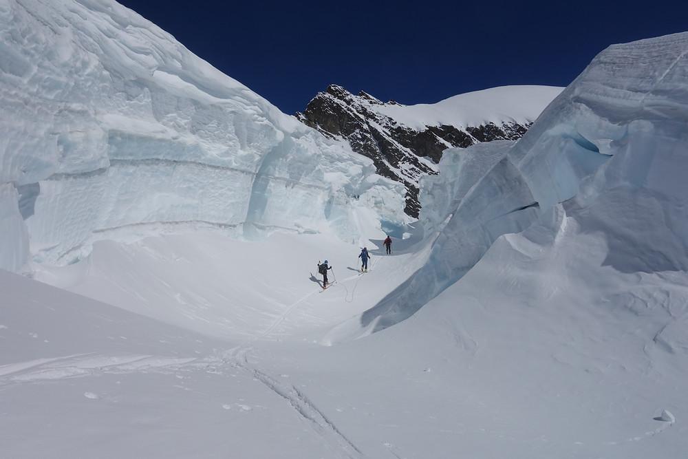 Skitour Aletsch Berner Oberland Fiescherhörner Finsteraarhorn