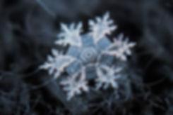 Schneeflocke - Südtirolalpin