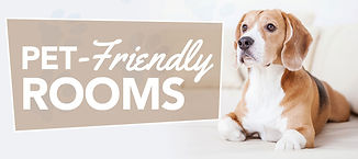 pet-friendly-rooms-banner.JPG
