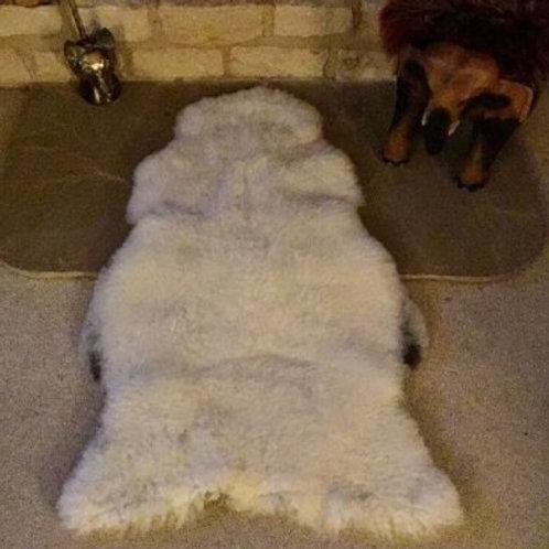 Shetland ram sheepskin, grey katmoget.