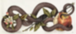 snake-and-apple_edited.jpg