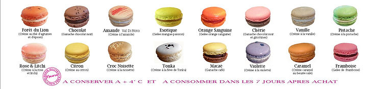 Macarons Automne hiver 2019.jpg