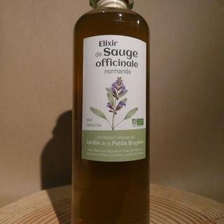 Salvia officinalis 50cl