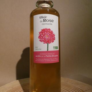 Rosa gallicaxdamascena 50cl