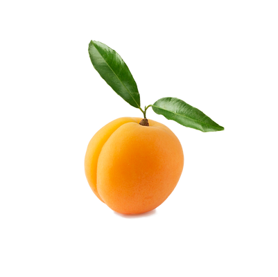 Apricot.png