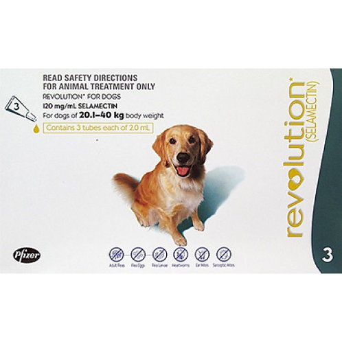 Revolution Teal Dogs 44-88lbs (20-40kg) - 3 Pack