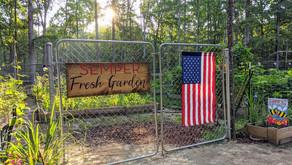 VIDEO: Northern Virginia Vegetable Garden Tour: The Semper Fresh Garden