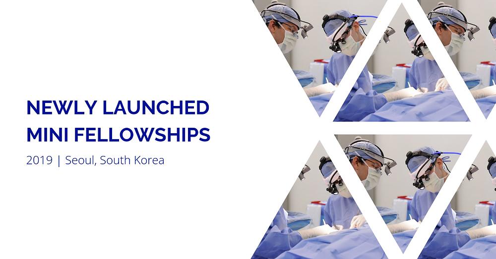 5 NEWLY Launched Mini Fellowships: July 2019 | Seoul, South Korea