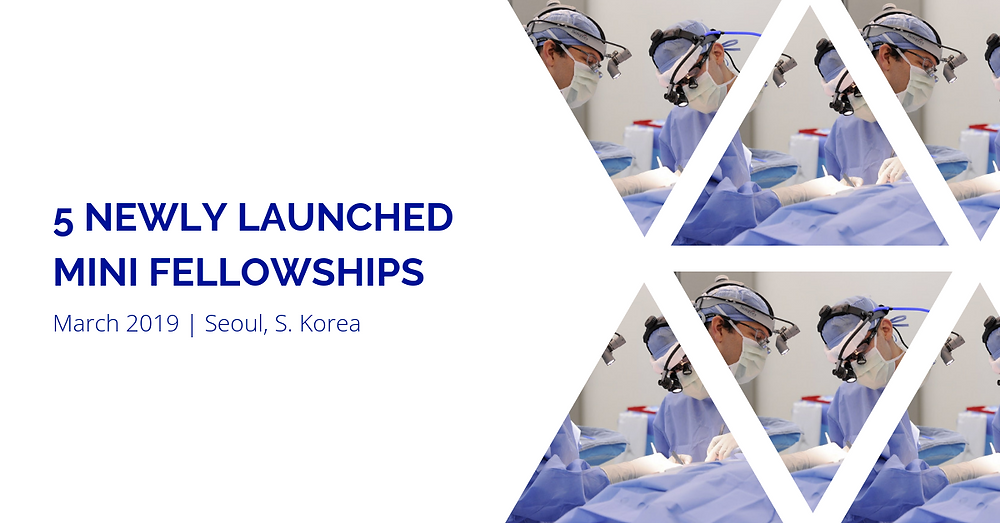 5 NEWLY Launched Mini Fellowships: March 2019 | Seoul, South Korea
