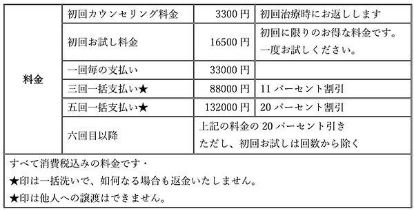フォトフェイシャル料金.jpg