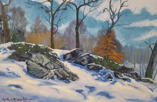 Last Snow of Winter, Arnold Arboretum