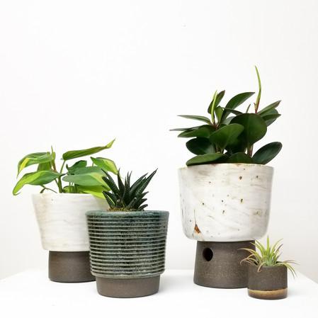 Desert White Plant Pots
