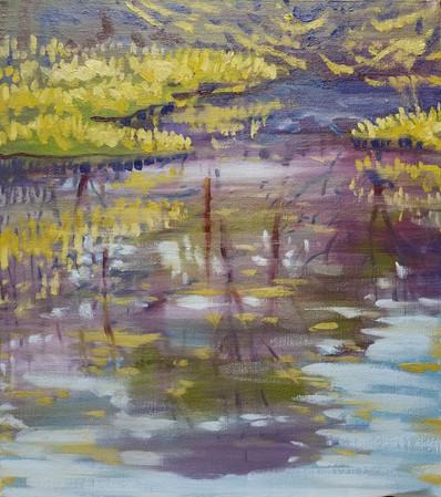 Pond I, Arnold Arboretum