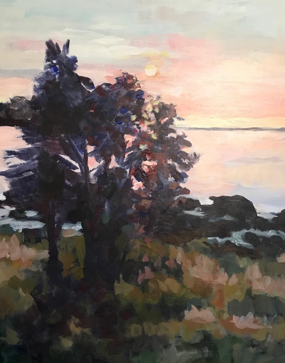 Swan's Island Morning