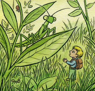 Insect and Boy