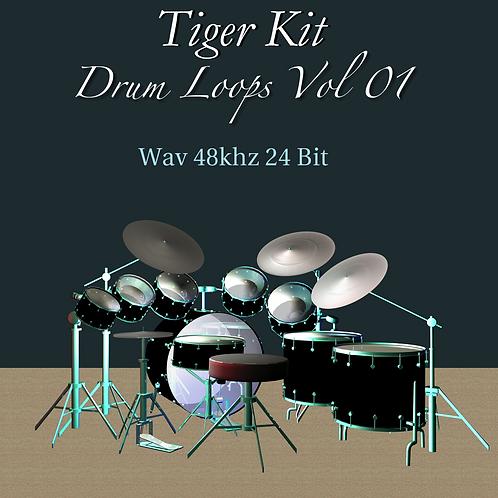Drum Loops Vol. 1 WAV
