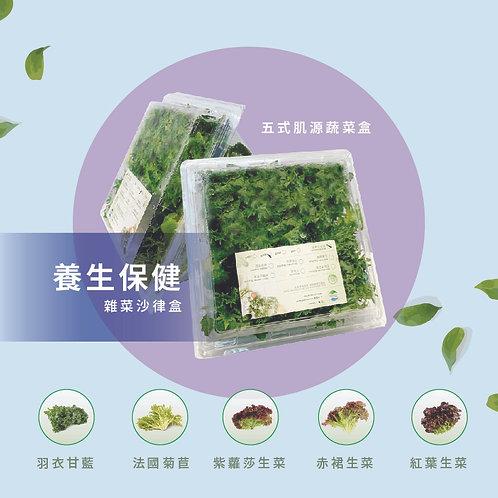 養生保健 | 五式肌源蔬菜盒 (300g) Health & Wellness