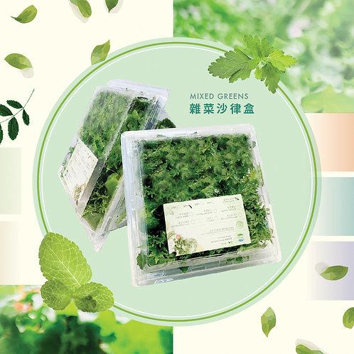 水耕菜  雜菜沙律盒 100g (隨機挑選 )MIXED GREENS