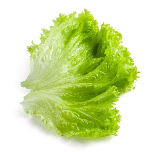 100g 玻璃生菜 (橡葉萵苣) LEAF LETTUCE