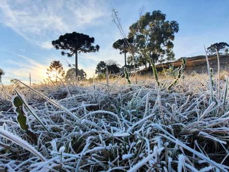 Temperatura negativa faz a Serra Catarinense amanhecer congelada; São Joaquim -5.7°C