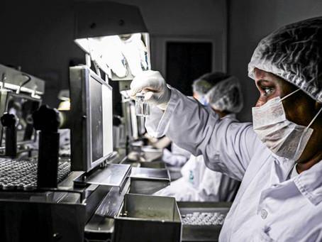 Instituto Butantan está desenvolvendo soro para tratar e curar pessoas com Covid-19