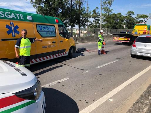 Homem morre atropelado na BR 101 em Balneário Camboriú