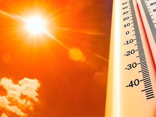 Em Blumenau, sensação términa passa dos 43 ºC nesta sexta-feira