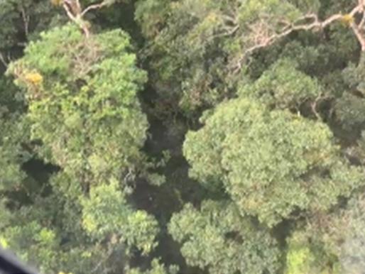 VÍDEO - Mulher é resgatada no pico da pedra em Camboriú