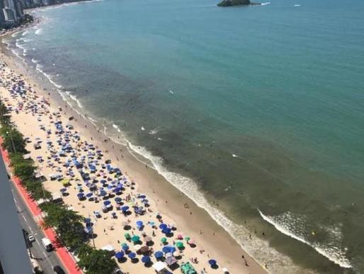 Sobre organismos que causam mancha no mar em Balneário Camboriú