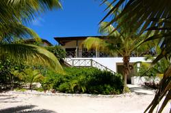 Lush Coconut Palms line the Paths