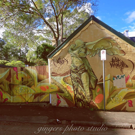 Newtown - An inner west suburb of Sydney with a charming personality  你所不知道的新镇(Newtown)