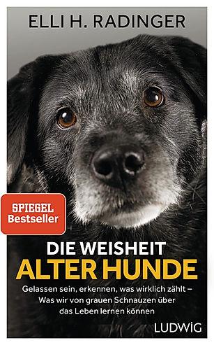 Radinger_EDie_Weisheit_alter_Hunde_19354