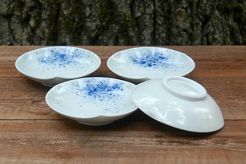 Blue and White Porcelain Dish by Emily Kiewel
