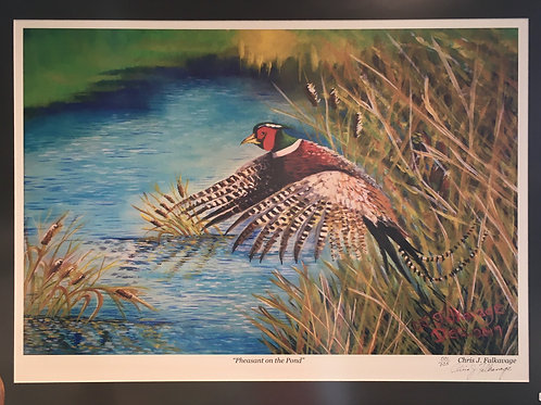 "Pheasant on the Pond,Fine Art Print by Chris ""C. J."" Falkavage"