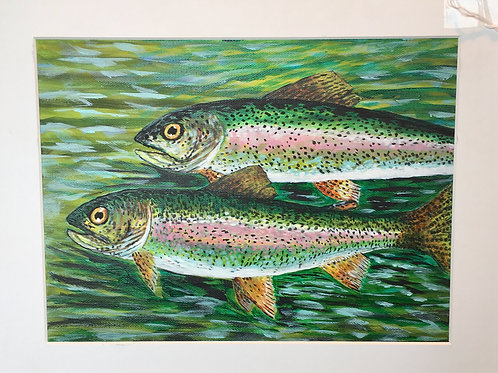 "Rainbow Trout by Chris ""C. J."" Falkavage"