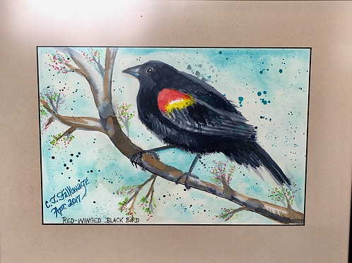 "Red Wing Blackbird by Chris ""C. J."" Falkavage"
