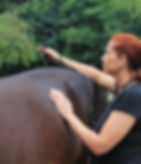 Bernadette Stadler Garbsen Hannover Bremen Hamburg Niedersachsen Physiotherapeut Pferdephysiotherapeut Pferdeosteopath Katzenphysiotherapeut Katzenosteopath Hundephysiotherapeut Hundeosteopath Lasertherapie Faszienbehandlung Faszientherapie Akupunktur Osteopath Angela Tederke Pferde Katze Hunde