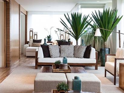 Alegre e decore sua casa com plantas