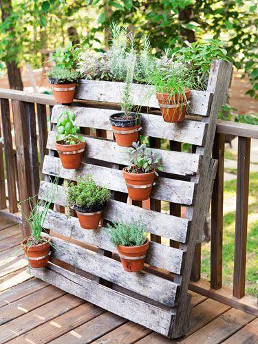 Jardins verticais são ótimos para pendurar vasos de plantas ornamentais.